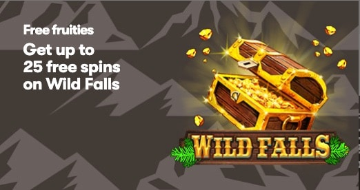 10Bet 25 Free Spins on Wild Falls